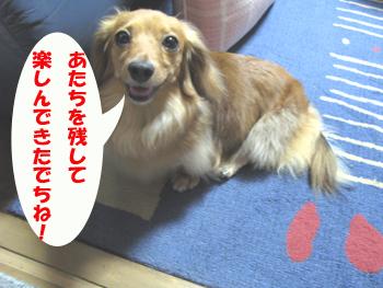 2008108014(2).jpg
