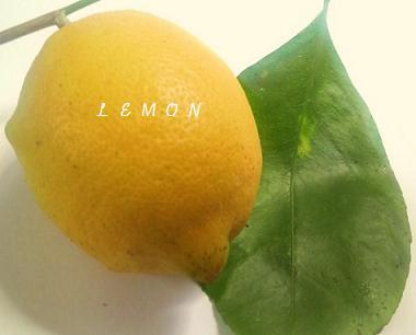 remon1111