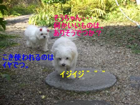 コピー ~ ぽにょ 392