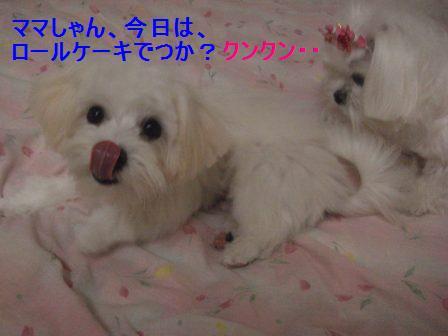 コピー (2) ~ ぽにょ 594