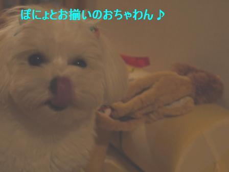 コピー ~ ぽにょ 990