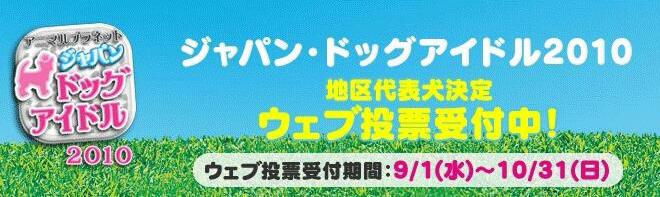 ジャパン・ドッグアイドル2010へ