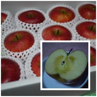 pageりんご1