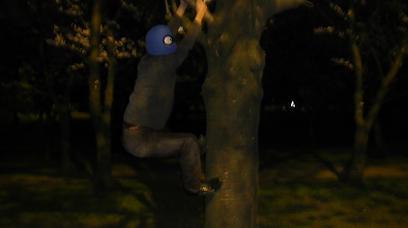 3-木登り