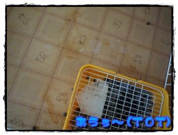 2008-0092.jpg