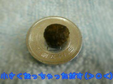 P1190984.jpg