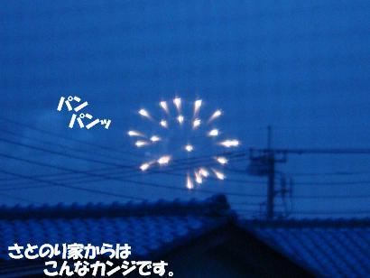 DSC01002.jpg