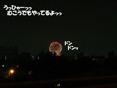 DSC01122.jpg