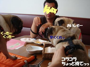 DSC01335.jpg