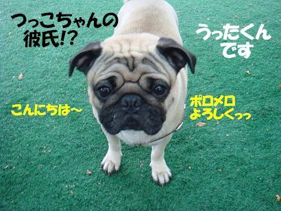 DSC04445.jpg