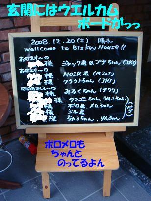 DSC04891.jpg