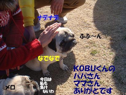DSC05901.jpg