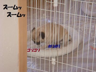 DSC07992.jpg