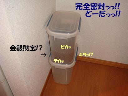 DSC09998.jpg