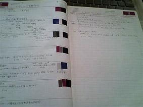 カラーチップ20111230