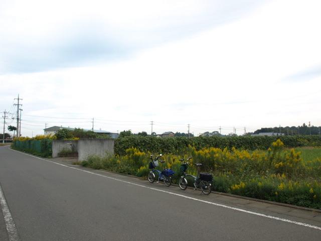 P101030b.jpg