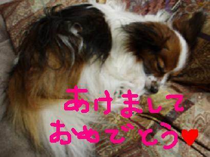 20060109115947.jpg