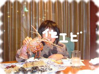 2008_1218アルバム0012