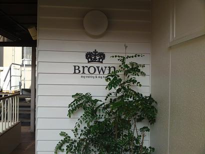Brown2.jpg