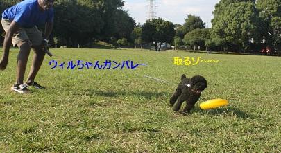IMG_4628.jpg