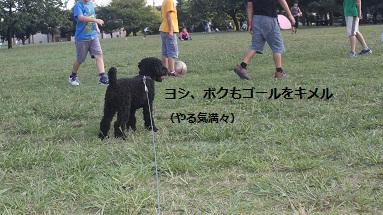 IMG_4655.jpg
