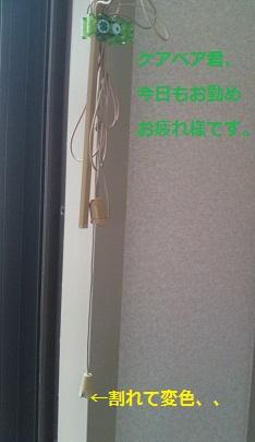 SN3J0286_20100519193853.jpg