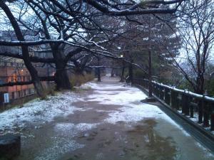 201102yotuya