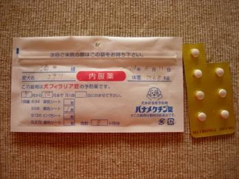 フィラリア薬