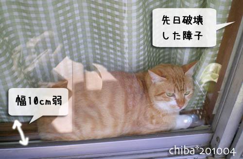 chiba10-04-109.jpg