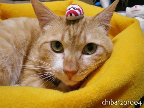 chiba10-04-127.jpg