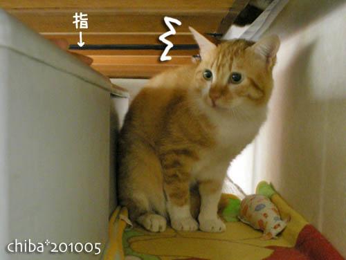 chiba10-05-122.jpg