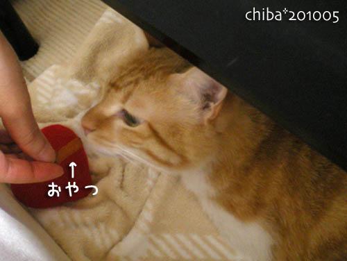 chiba10-05-147.jpg