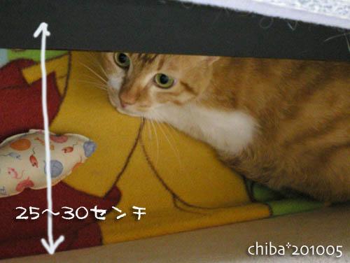 chiba10-05-87.jpg