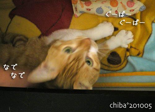 chiba10-05-89.jpg