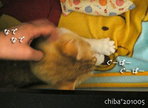 chiba10-05-90.jpg