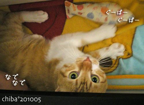 chiba10-05-94.jpg