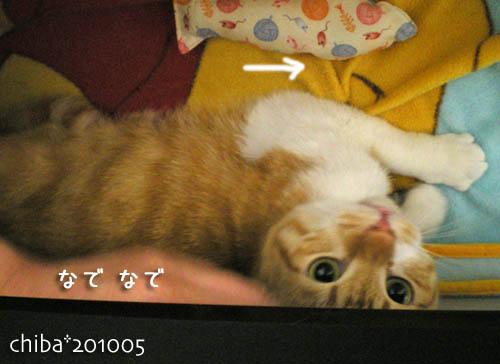 chiba10-05-95.jpg