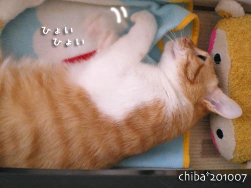 chiba10-07-101.jpg