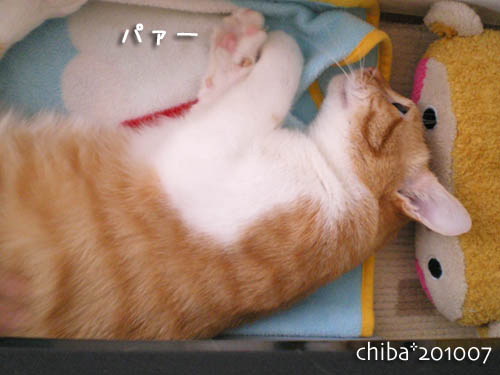 chiba10-07-102.jpg