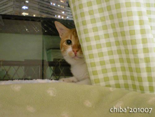 chiba10-07-123.jpg