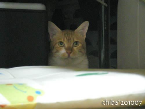 chiba10-07-65.jpg