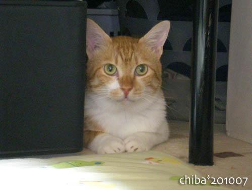 chiba10-07-66.jpg