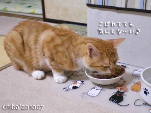chiba10-07-73.jpg