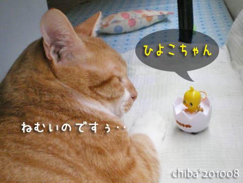 chiba10-08-73.jpg