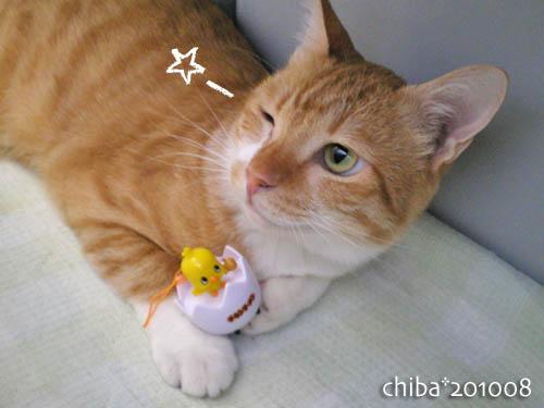 chiba10-08-80.jpg