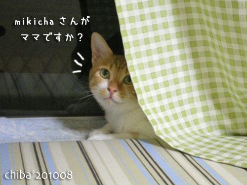 chiba10-09-02.jpg