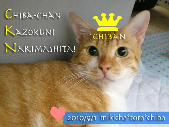 chiba10-09-11.jpg