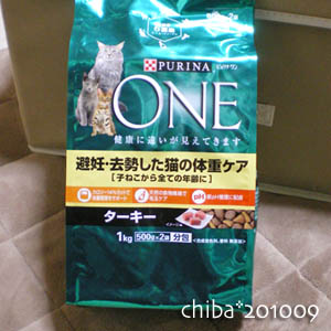 chiba10-09-127.jpg