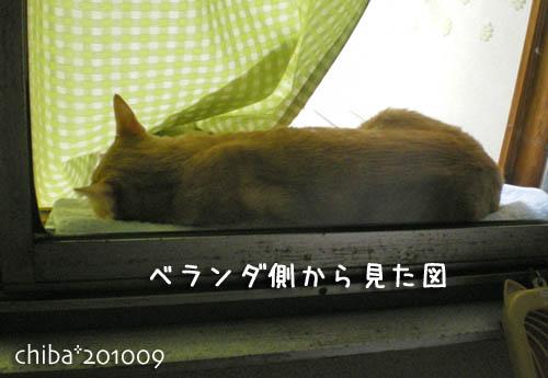 chiba10-09-60.jpg