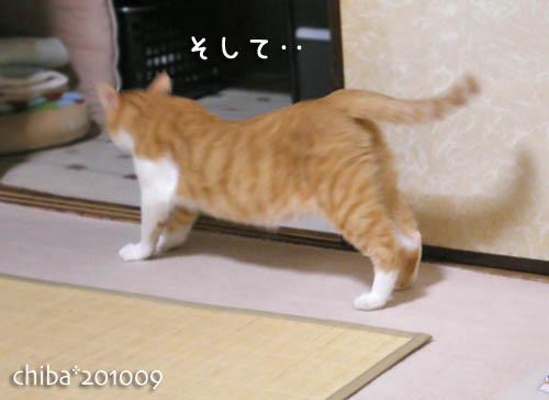 chiba10-09-93.jpg